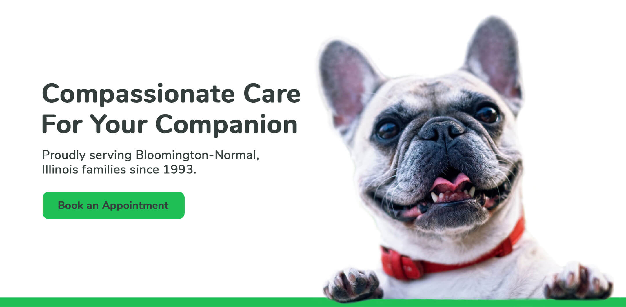 Compassionate Care For Your Companion. Proudly serving Bloomington-Normal, Illinois families since 1993. Book an appointment.